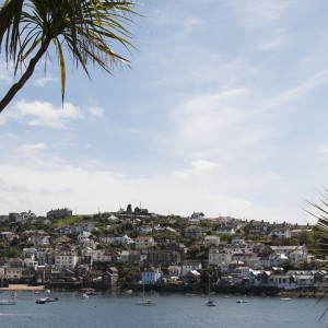 Fowey Phot Visit Cornwall / Barnacle and Bird Photography